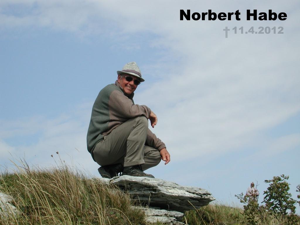 Norbert Habe